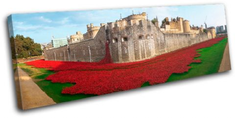 Tower of London Poppies City - 13-2239(00B)-SG31-LO